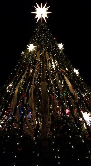 Vancouver Christmas 1