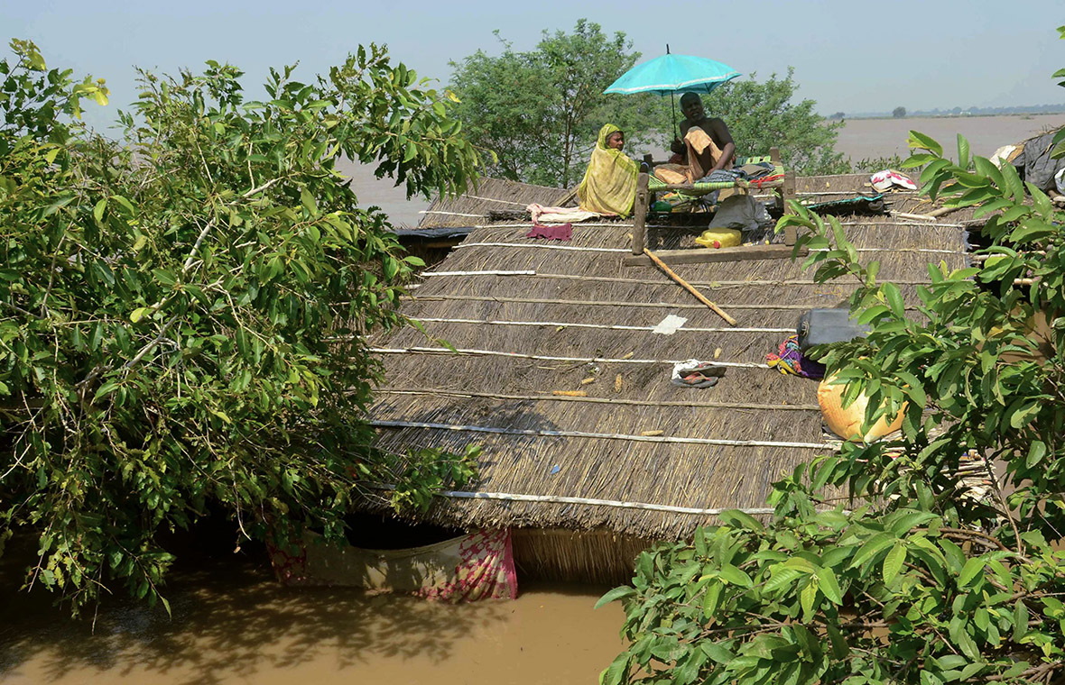 India: Monsoon Floods and Dengue Fever